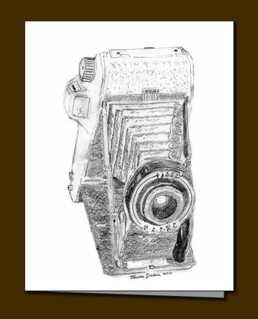 111-accordion-camera