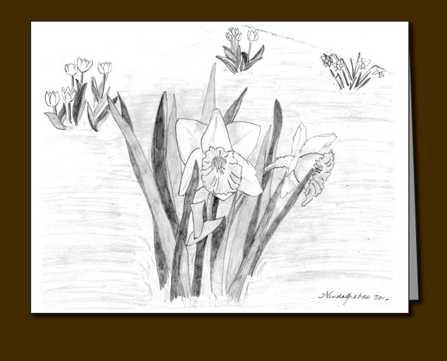 543-daffodils-and-tulips