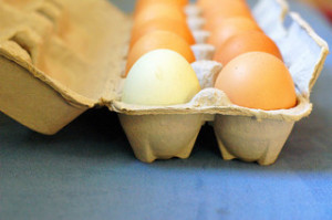 Brown eggs, egg carton