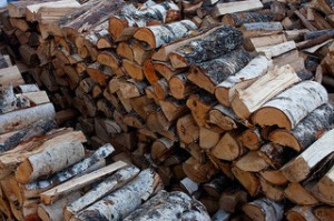 much firewood stacked in rows