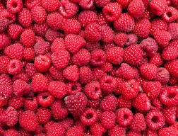 red raspberries,
