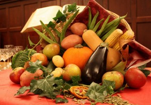 cornucopia, egg plant, pumpkin, apple, squash, corn on the cob, Bible, Thanksgiving, potatoes, seeds,