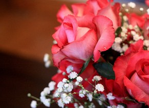 red flowers, baby's breath, bouquet, red rose,