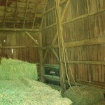 Finished with First Crop Hay