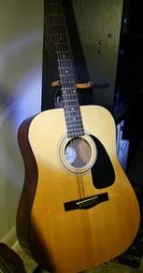 acoustic guitar, guitar,