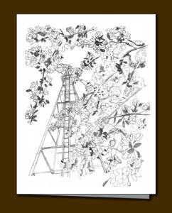 Windmill, Blossoms, Crabapple blossoms,
