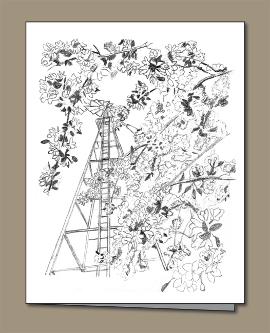 Windmill, Blossoms, Crabapple blossoms,