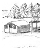 pencil sketch, chicken house,grove of trees, grove, trees,