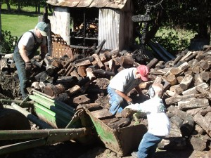 wood pile, firewood, piling wood, men piling wood,