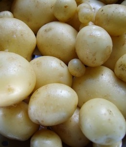 potatoes,