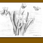 Floral Springtime Note Cards