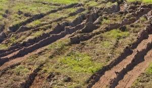 muddy rutts, rutts, mud, car tracks,