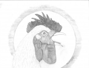 pencil sketch, rooster crowing, rooster, white rooster,