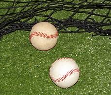 balls, net, turf,