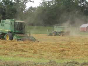 John Deere combines, havesting oats, oats straw,