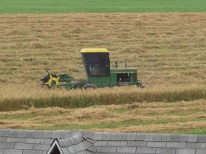 John Deere swather working in oat field