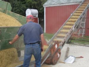 wagon, oats, Oat storage, elevator, granery,