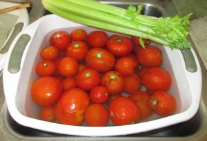 Water tub, red tomatoes, stalk of celery, celery,