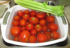 Water tub, red tomatoes, stalk of celery, celery,