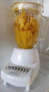 blender, Pumpkin,