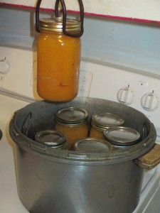 pressure canner, canning jars, pumpkin, pumpking puree, canning pumpkin, jar lifter,