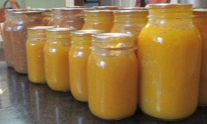 canning jars, quart jars, pint jars, canned pumpkin, spiced pumpkin, pumpkin puree, pumpkin puree spiced,