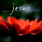 Jesus Put Death in its Place