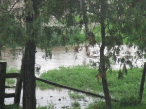 Flooding on the Farm, Heavy Rain, Rain