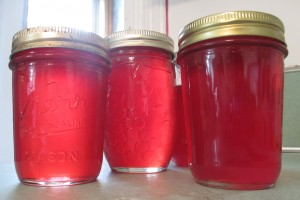 Mason jars, currant jelly,