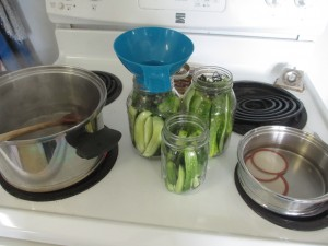 Lifetime cookware, dill, dill pickling, pickles, pickle brine, canning lids,