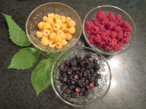 Raspberries, Black Raspberries, Red Raspberries, Yellow Raspberries, Golden Raspberries, Raspberry colors, Princess House bowls,