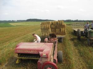 new holland baler, straw bales, John Deere B, Tractor, hay wagons,
