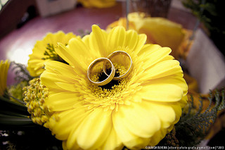 Wedding bands, Wedding rings, golden wedding bands,