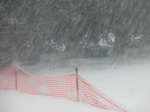 snow, snowstorm, snow fence, driving snow